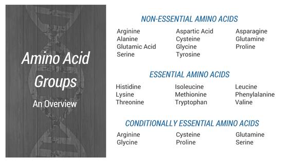 Amino Acid Data: Filling The Gaps